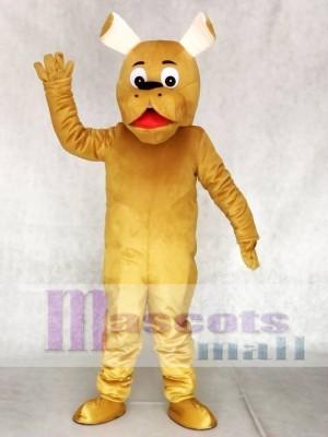 Runde Nase Hund Maskottchen Kostüme Tier