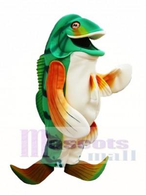 Bass Fisch Maskottchen Kostüm grün Fisch Maskottchen Kostüme Tier