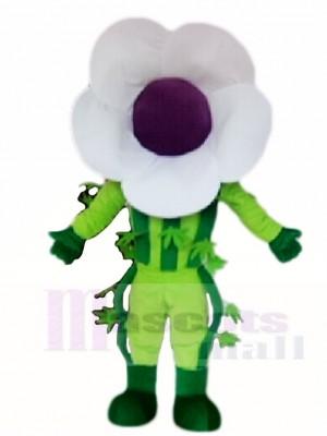 Weiß Blume Maskottchen Kostüme Pflanze