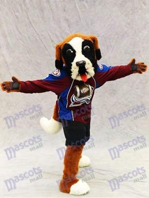 Bernie der Hund Bernhardiner Colorado Lawine Maskottchen Kostüm Tier