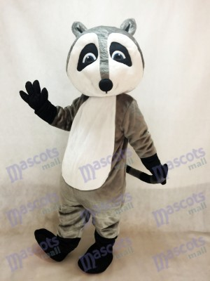 Grau Waschbär Maskottchen Kostüm Tier