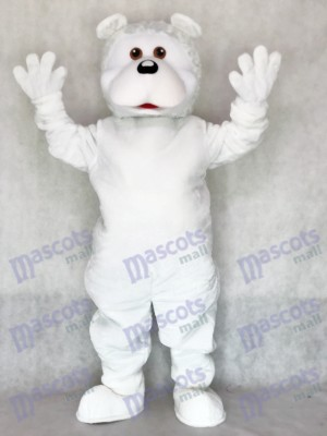 Adult Cute White Bear Erwachsene Maskottchen Kostüm Tier