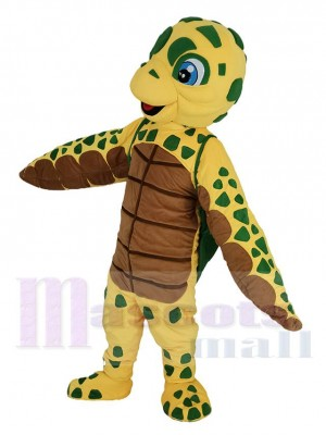 Schildkröte maskottchen kostüm