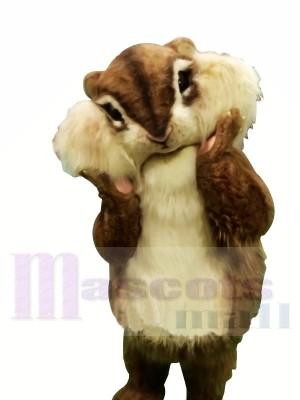 Beste Qualität Eichhörnchen Maskottchen Kostüme