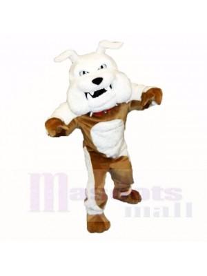 Greenstone Bulldogge Maskottchen Kostüme Erwachsene
