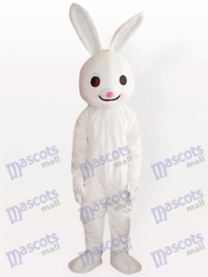 Rosa farbenes Nasen Osterhasen Kaninchen erwachsenes Tier maskottchen Kostüm