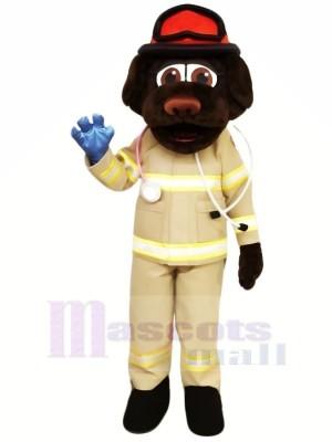 Feuer Abteilung Hund mit rot Hut Maskottchen Kostüme