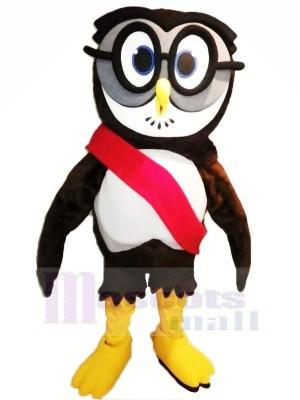Hoch Qualität Hochschule Eule Maskottchen Kostüme Billig