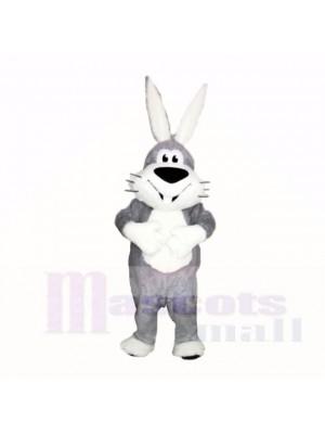 Lächelnd Grau und Weiß Hase Maskottchen Kostüme Karikatur