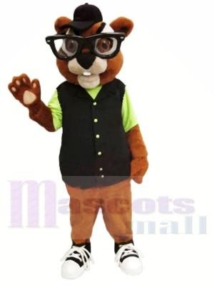 Mollig Streifenhörnchen Maskottchen Kostüme