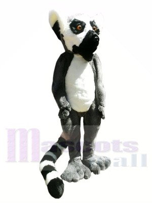Hochwertige pelzigen Lemur Maskottchen Kostüme