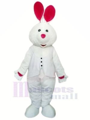 Weiß Hase mit Lange Ohr Maskottchen Kostüme Tier