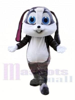 Karikatur Hase Maskottchen Kostüme Tier