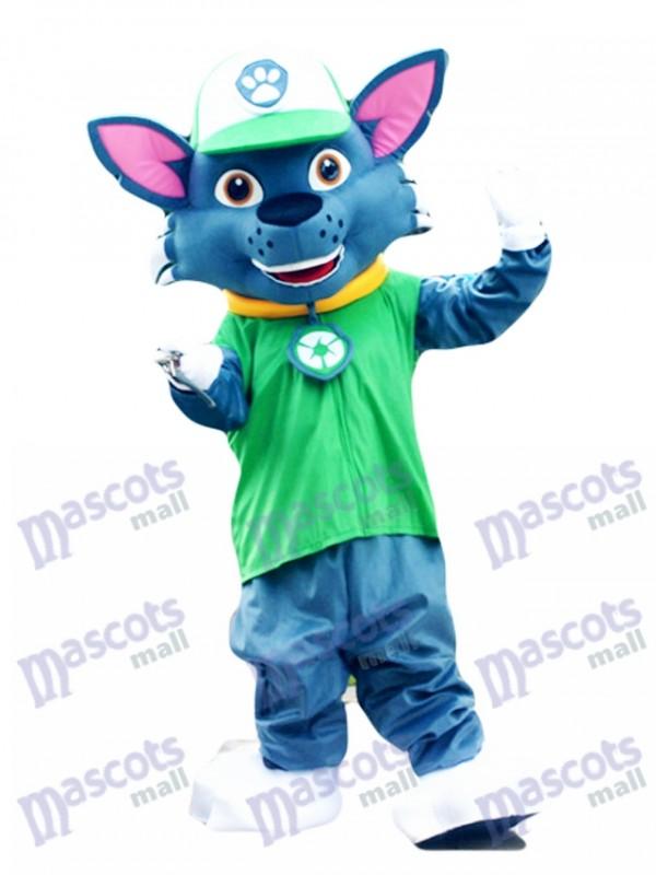 Paw Patrol Recycling Ökologie Pup Rocky Maskottchen Charakter Kostüm Eco Pup