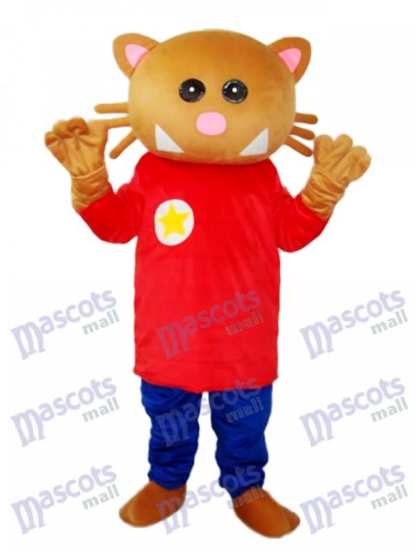 Stern Bär Maskottchen Erwachsene Kostüm Tier
