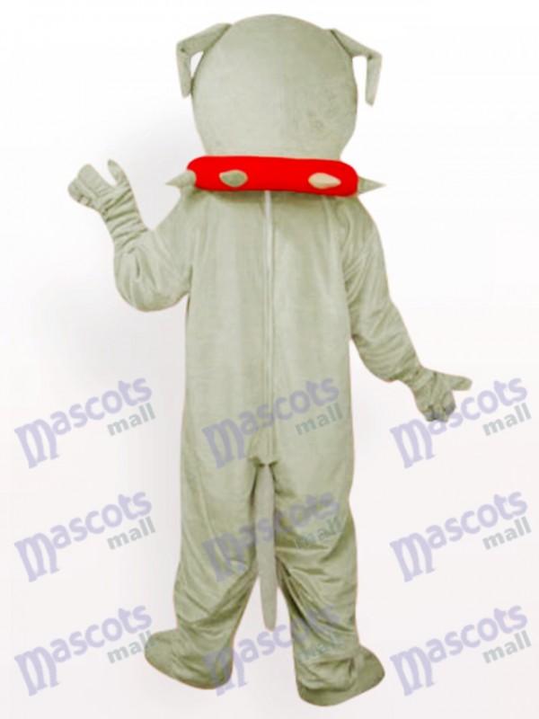 Hund Bulldogge Erwachsener Maskottchen lustiges Kostüm