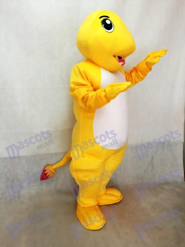 Charmander Pokemon Pokémon GO Taschen Monster Dragon Fire Maskottchen Kostüm