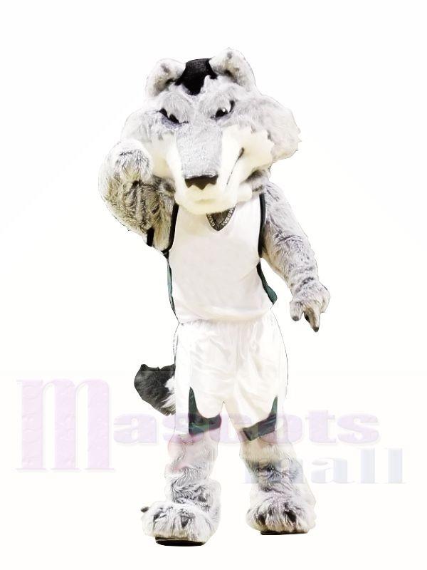Hochschule Heftig Wolf Maskottchen Kostüme