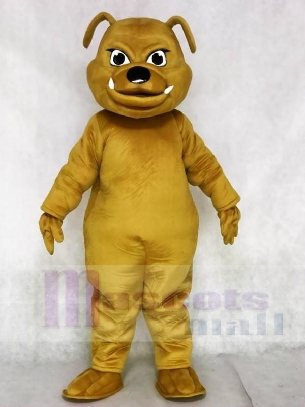 Braun Bulldogge Maskottchen Kostüme