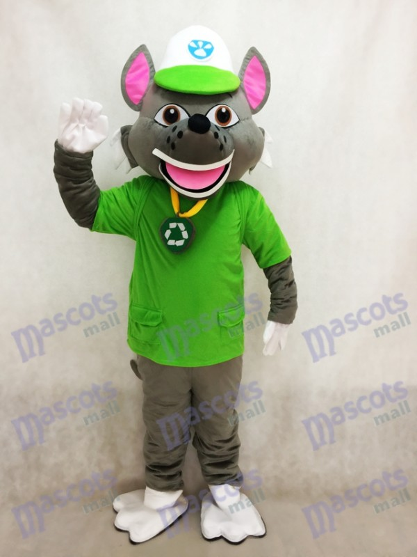 Pfote Patrol Recycling Ökologie Welpe Rocky Maskottchen Kostüm Eco Pup