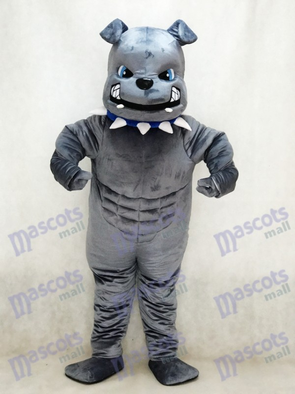 Neues graues Bulldog Maskottchen Kostüm Tier