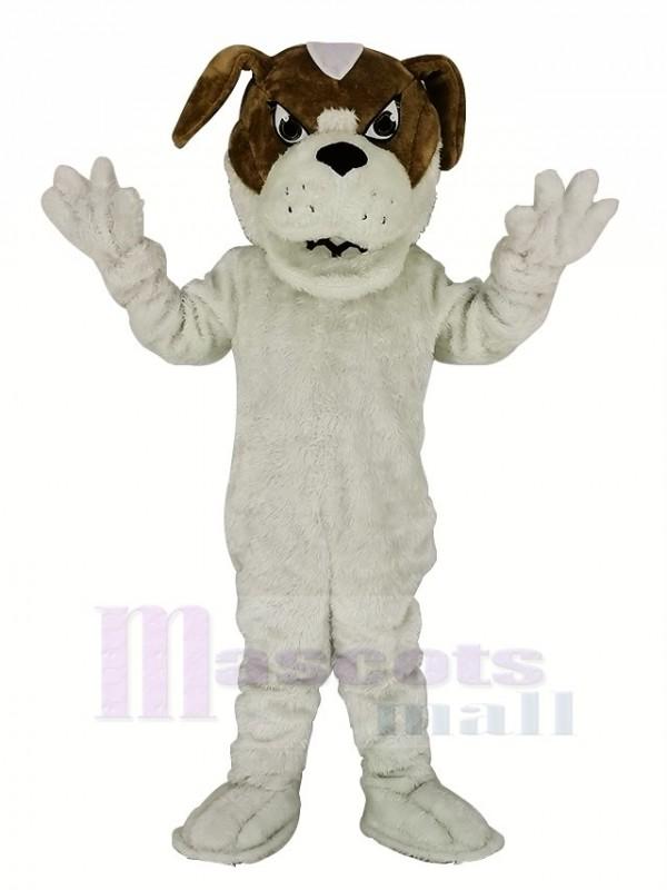 Heilige Bernard Hund Maskottchen Kostüm Karikatur