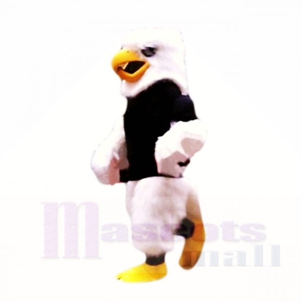 Hochschulpelzadler mit schwarzer Hemd-Maskottchen-Kostüm-Schule